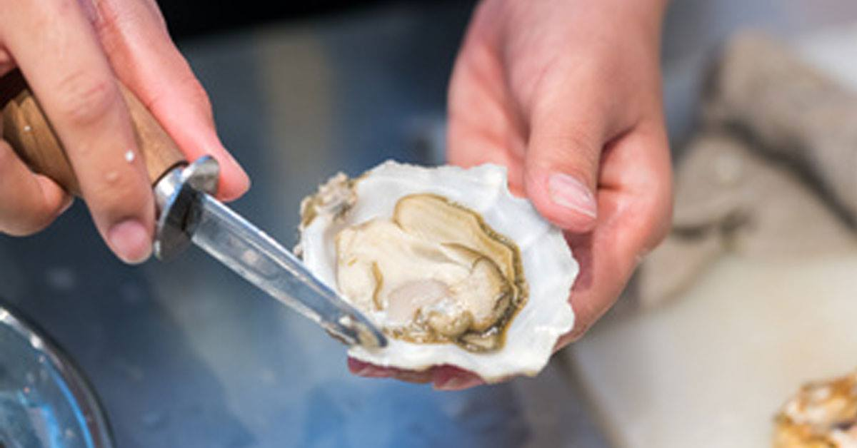 Dégustation d'huîtres cancale tous les week end de décembre