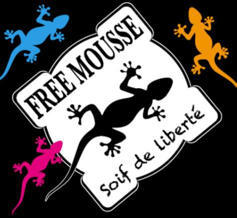 Bière Free Mousse